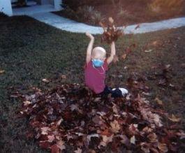 mm_leaves